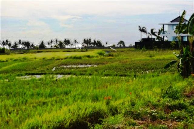 Tanah dijual di Canggu Bali dekat dengan Pantai Cemagi Canggu - TJCG005E
