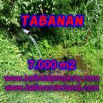 JUAL TANAH DI TABANAN BALI TJTB089