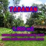 TANAH MURAH DI TABANAN TJTB091