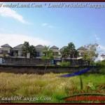 JUAL MURAH TANAH di CANGGU 831 m2 lingkungan villa