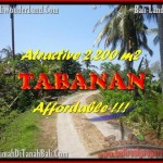 JUAL TANAH di TABANAN BALI 2.200 m2 View kebun