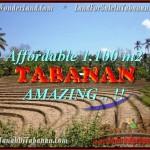 INVESTASI PROPERTY, TANAH MURAH di TABANAN BALI TJTB170