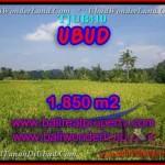 TANAH DIJUAL MURAH di UBUD BALI 18.5 Are di Ubud Tegalalang