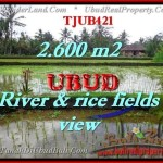 TANAH MURAH di UBUD Untuk INVESTASI TJUB421