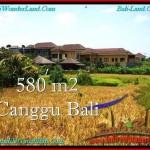 JUAL TANAH di CANGGU 5.8 Are di Canggu Pererenan