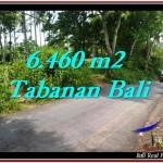 INVESTASI PROPERTI, DIJUAL TANAH di TABANAN BALI TJTB256