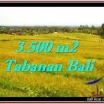 TANAH di TABANAN BALI DIJUAL MURAH 35 Are View sawah dan laut