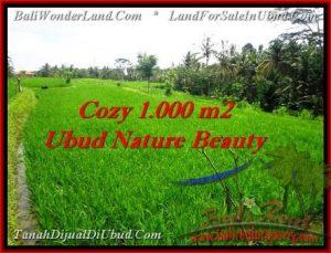 DIJUAL TANAH MURAH di UBUD 1,000 m2 di Ubud Tegalalang