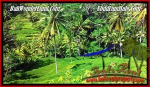 JUAL TANAH MURAH di UBUD 25 Are View Tebing,sawah Link Villa