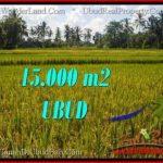 TANAH DIJUAL MURAH di UBUD TJUB551
