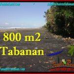 JUAL TANAH MURAH di TABANAN BALI 800 m2 Tepi Pantai ( Beachfront ) View Sawah