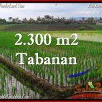 INVESTASI PROPERTI, DIJUAL TANAH di TABANAN BALI TJTB263