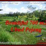 DIJUAL TANAH di UBUD BALI 700 m2 di Ubud Pejeng