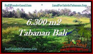 DIJUAL TANAH di TABANAN 63 Are di Tabanan Selemadeg