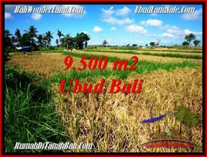 TANAH MURAH di UBUD DIJUAL 9,500 m2 di Sentral Ubud