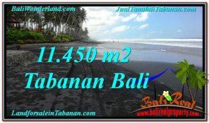 INVESTASI PROPERTI, DIJUAL TANAH di TABANAN BALI TJTB291