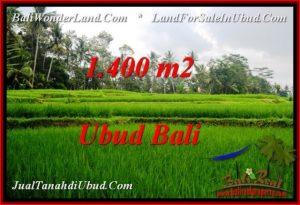 JUAL TANAH MURAH di UBUD BALI Untuk INVESTASI TJUB539