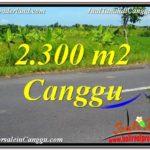 TANAH di CANGGU BALI DIJUAL 2,300 m2 View sawah,gunung, lingkungan villa