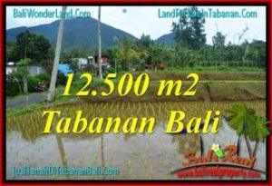 JUAL TANAH di TABANAN BALI 125 Are di Tabanan Penebel