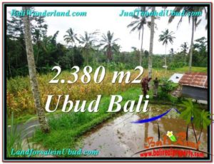 TANAH MURAH JUAL di UBUD BALI 2,380 m2 View kebun dan sawah