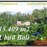 TANAH MURAH di UBUD BALI 154.9 Are di Sentral Ubud